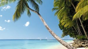 Barbados Cruise and Stay